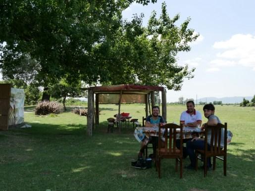 Teegarten.// Tea garden.