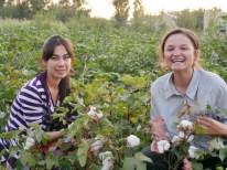 Charosxon und Antonia im Baumwollfeld.// Charosxon nd Antonia in the cotton field.