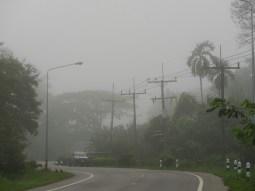 Not just Germany experiences fog in January;)// Nicht nur Deutschland hat Nebel im Januar;)