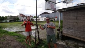 Zwei Clowns vor einem Reisfeld.// Two clowns in front of a rice paddy.