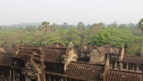 Angkor Wat in de jungle