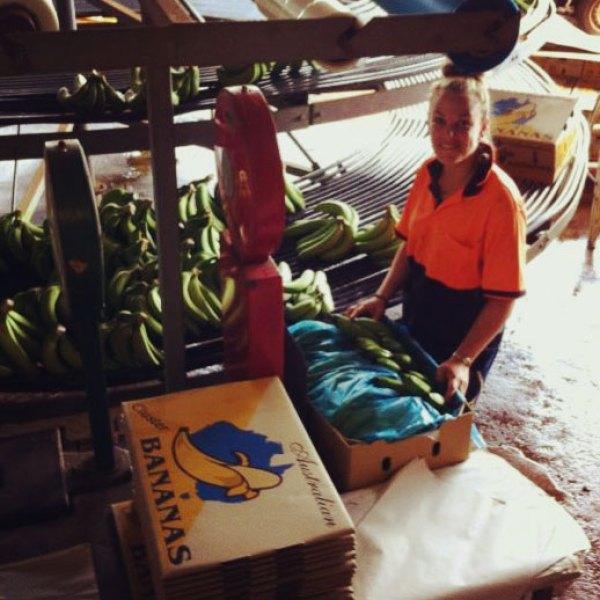 Bananen-inpakken-Australië