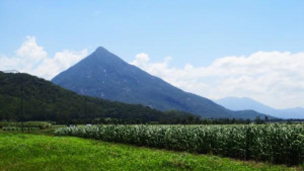 Walsh-Pyramid