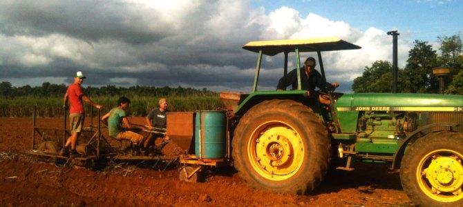 Wereldreis #17   Werken op de boerderij is niet altijd leuk