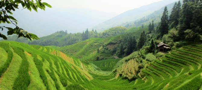 Wereldreis #39 | Marja op bezoek in China