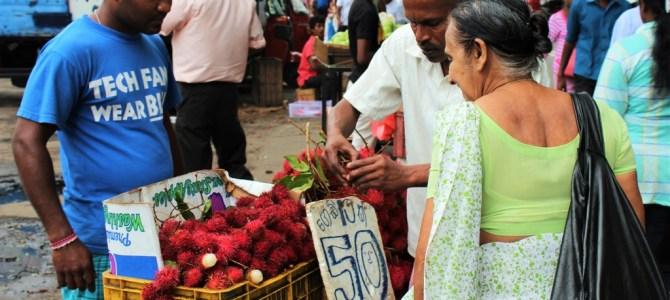 REISFILM | Kleurrijk Sri Lanka