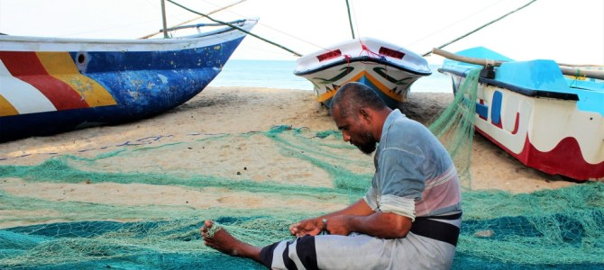 REIZEN | Treinen in Sri Lanka, Ella en Arugam Bay