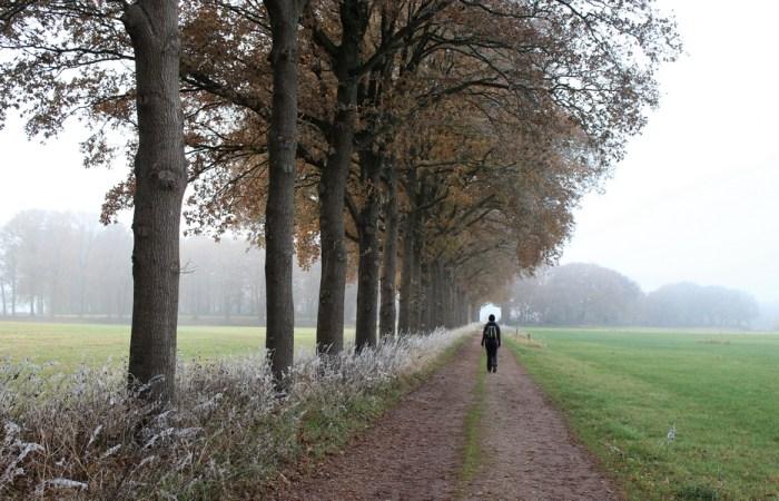 Prachtige winterwandeling in Nederland