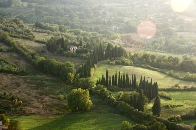 Valley near Orvieto, Umbria, Italy