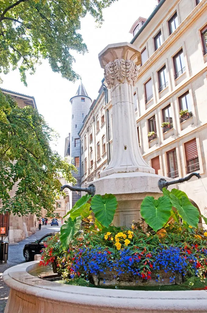 Flowers and fountain, Old Town Geneva