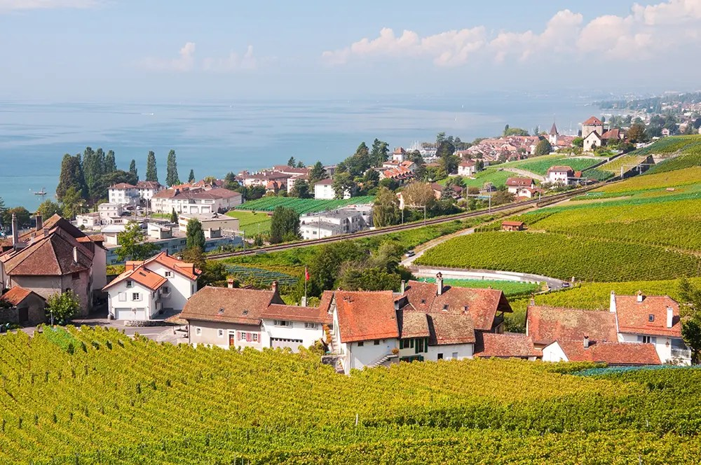 Along the Terrasses de Lavaux trail