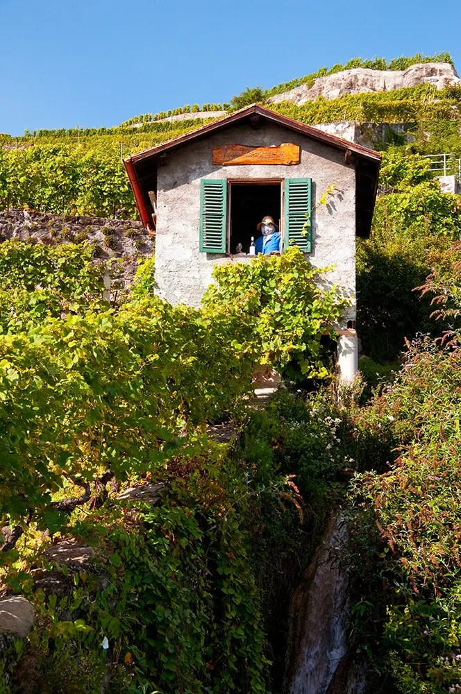 Small building with wine drinking scarecrow