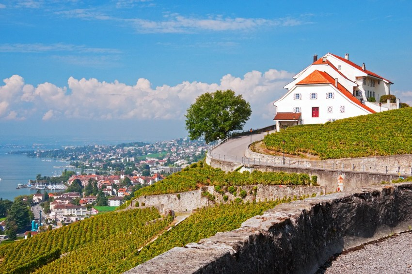 The Lavaux Terrace Vineyards along the shores of Lake Geneva, Switzerland