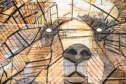 art-bear-graffiti-110118
