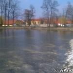 Staw w parku miejskim - Andrychów