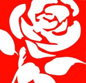 Lbour-rose