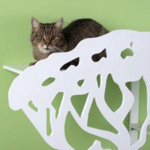 chat sur un veritable arbre a chat