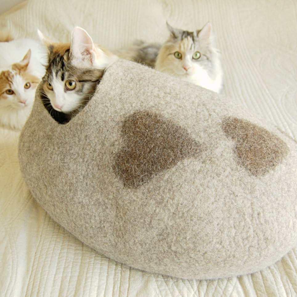 grotte chat allongée coeur