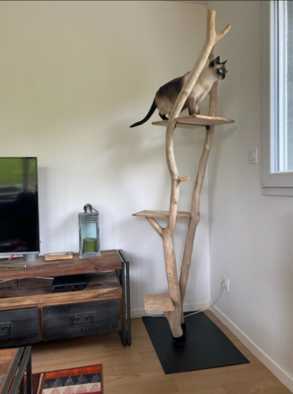 arbre-a-chat-design-naturel