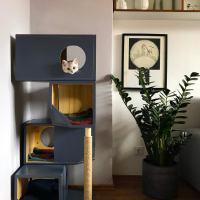 L'arbre à chat original : courbes, blocs et allure insolite