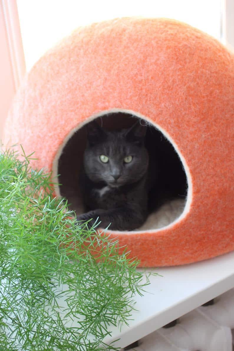 grotte chat agnesfelt