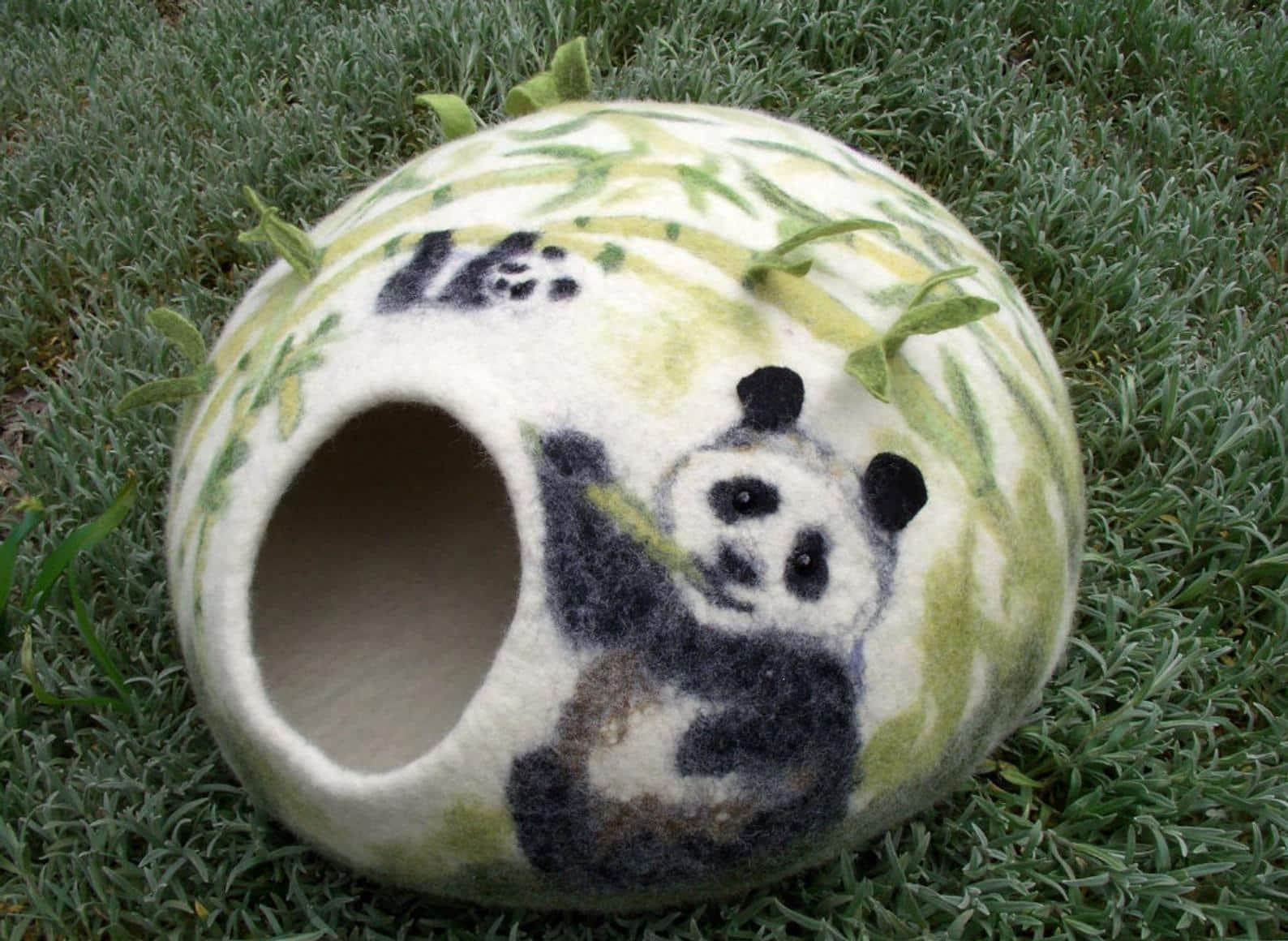 grotte chat original nature panda