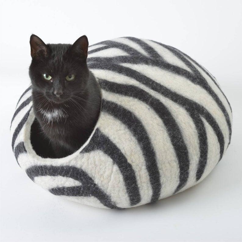 grotte chat zebre