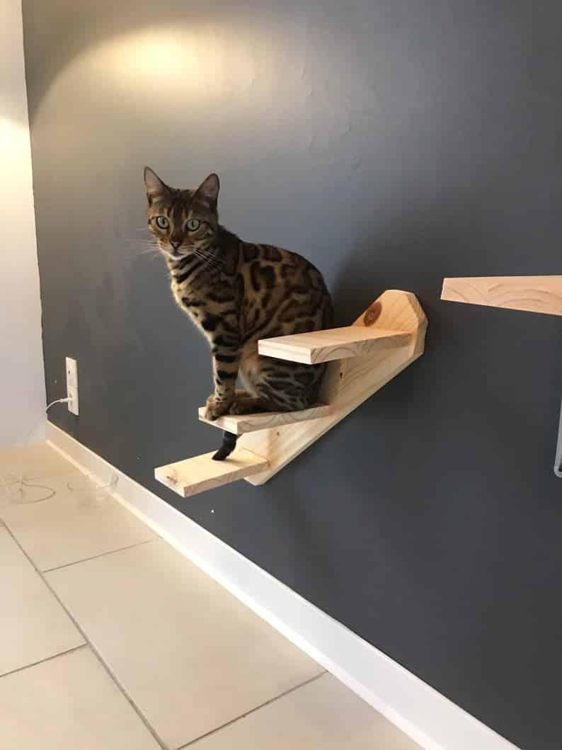 escalier bois naturel