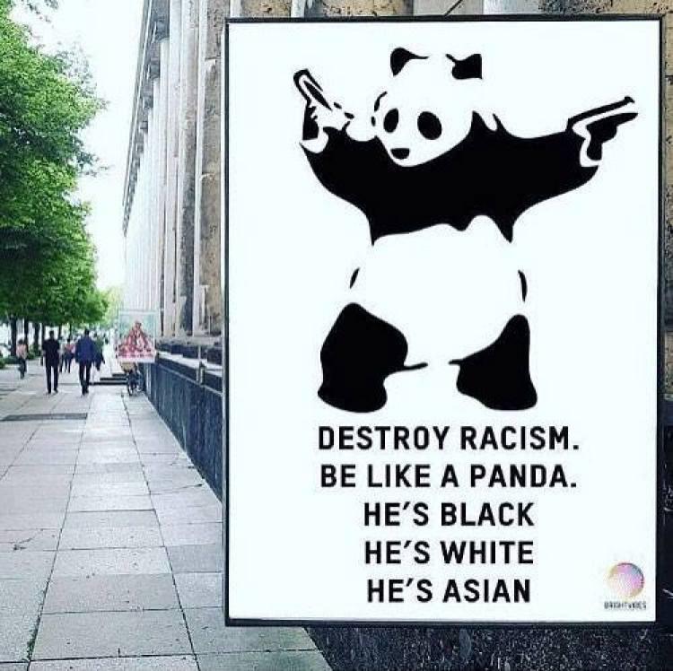 putaclic2-panda