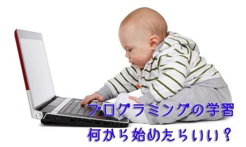 独学で学び始めるにはschoo(スクー)の「はじめて学ぶプログラミング言語の選び方」から!