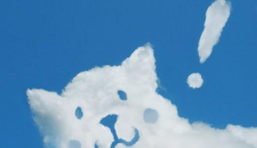 土肥美緒も犬が好きで性格が良い?!坂上忍との馴れ初めや実家、経歴(プロフィール)が気になる!