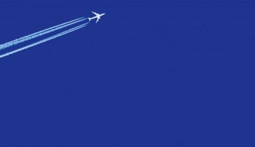 リキリシャスの航空会社はどこ?国籍やハーフなのかを調査!