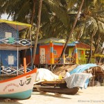 The Goan Odyssey – 5 Things to do in Goa