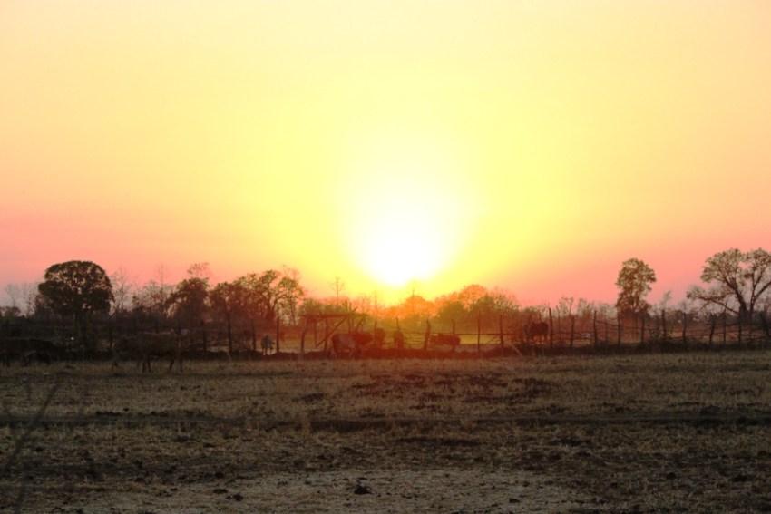 bhopal-sunset-Satpura tiger reserve