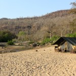 Camping in the Satpura tiger reserve