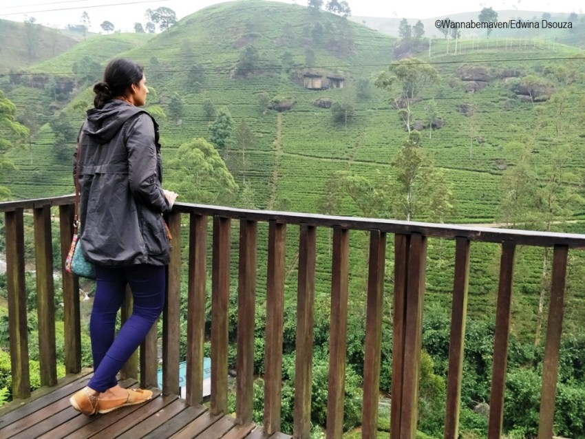 Nuwara eliya tea gardens-backpacking in sri lanka