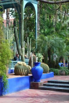 bamboe en cactussen