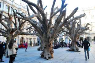 Tree - Ai Wei Wei