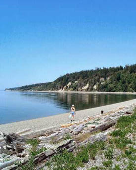 """""""Hike & Write with the Poet Laureate"""" begins July 20 at Cama Beach State Park."""