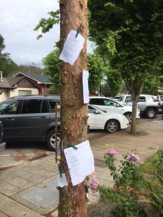 Snoqualmie poetry pole