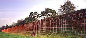 Electric Rabbit Fence