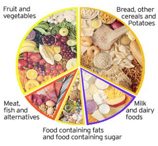 Guide to Healthy Portion Sizes Ramadan - Islam and Eating