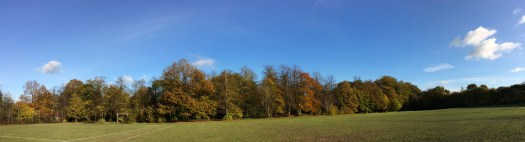 Hayley Green Wood Panoramic View