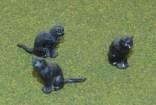 Reisler Animals8