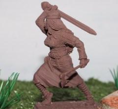 prikav noble warriors14
