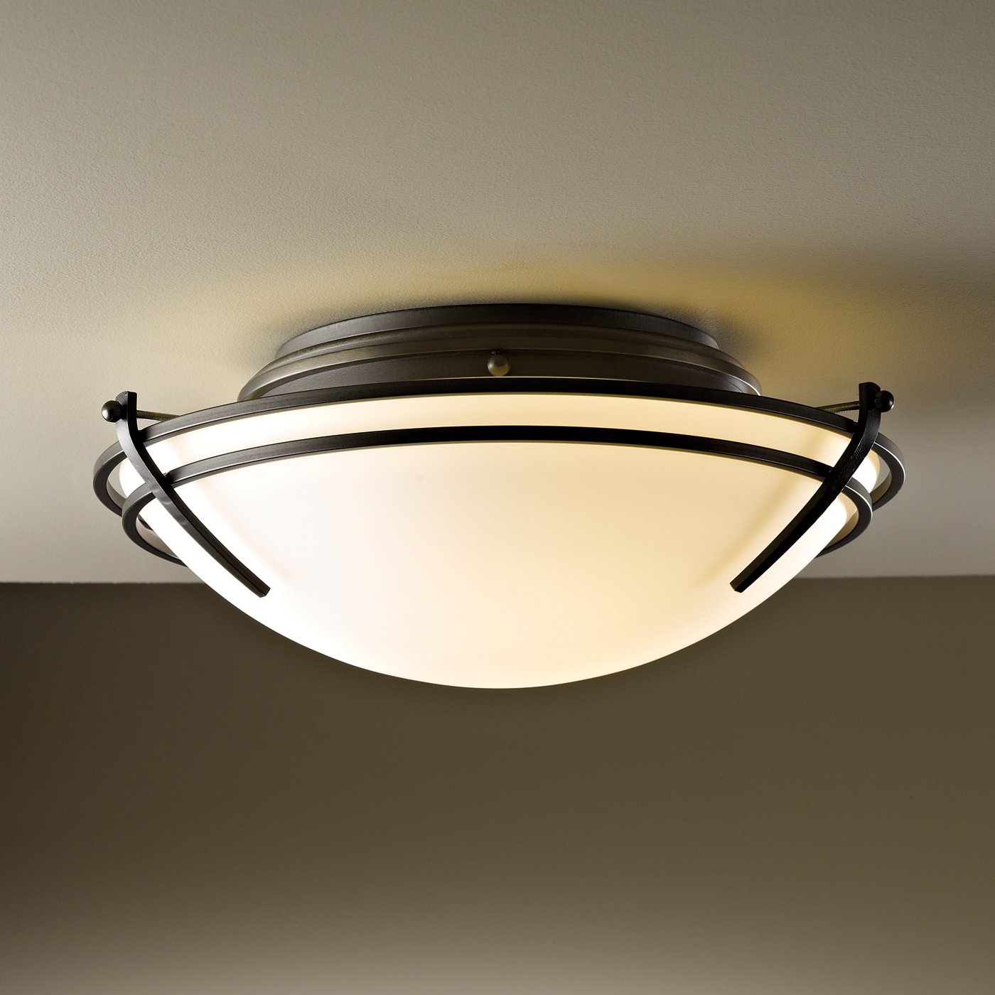Ceiling Mounted Picture Lights