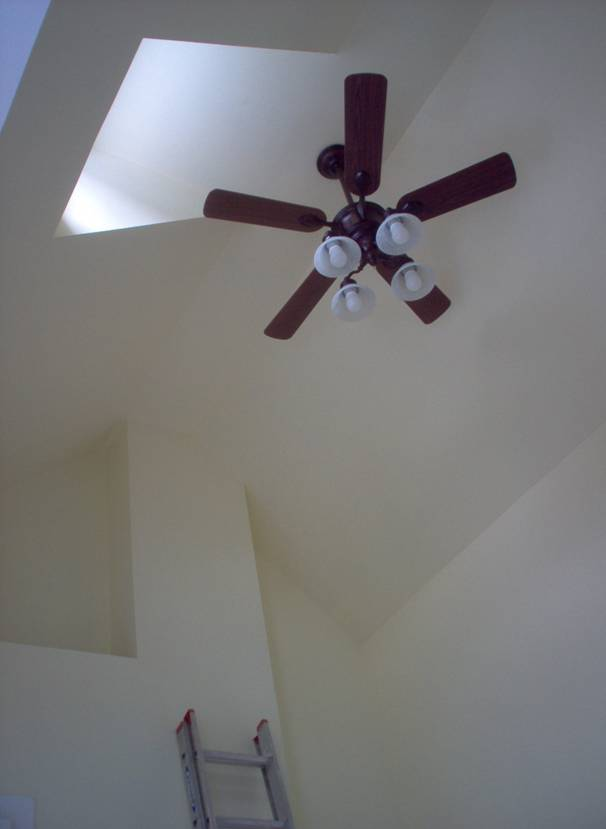 Ceilings Fans Lighting