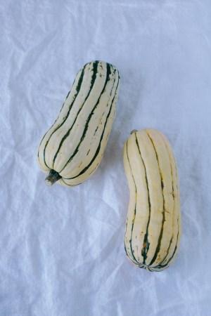 Delicata Squash Pesto Pasta - warmandrosy.com