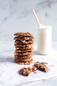 S'mores Oatmeal Chocolate Chip Cookies — warmandrosy.com