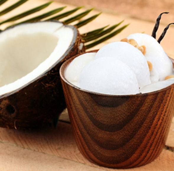 Coconut Cream 3 Pack Votive Candles